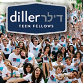 Apply for Diller Teen Fellows